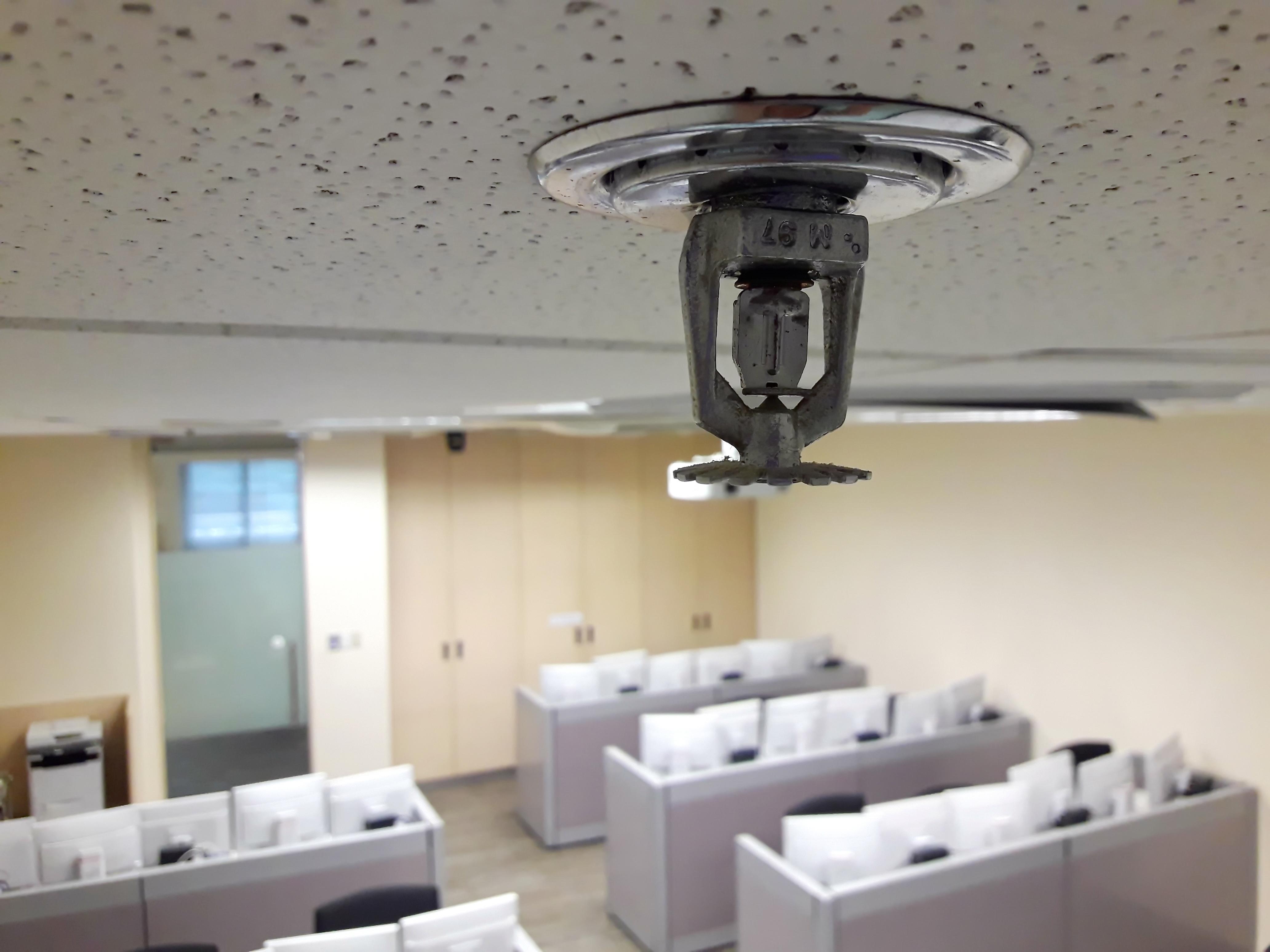 officefiresprinkler-1.jpg